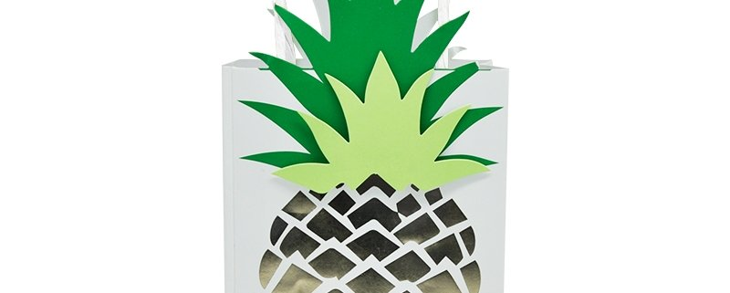 pineapple paper gift bags